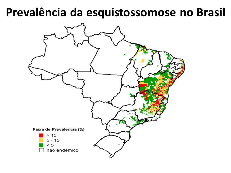 Prevalência da esquistossomose no Brasil