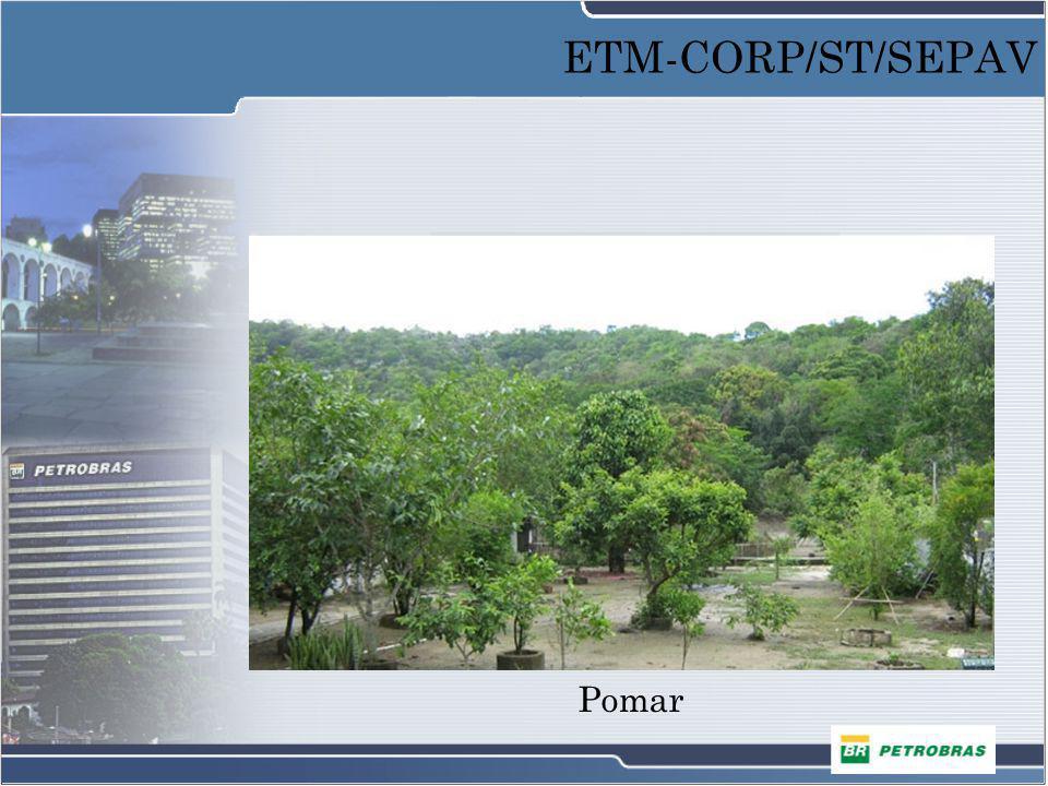 ETM-CORP/ST/SEPAV Pomar