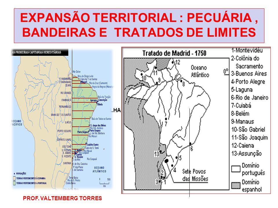 EXPANSÃO TERRITORIAL : PECUÁRIA , BANDEIRAS E TRATADOS DE LIMITES