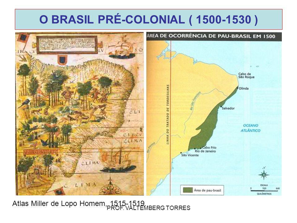 O BRASIL PRÉ-COLONIAL ( 1500-1530 )