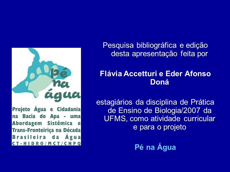 Flávia Accetturi e Eder Afonso Doná
