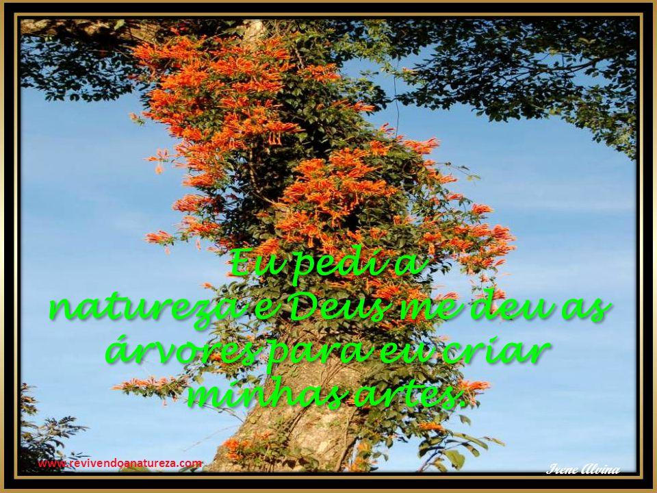 natureza e Deus me deu as árvores para eu criar minhas artes.
