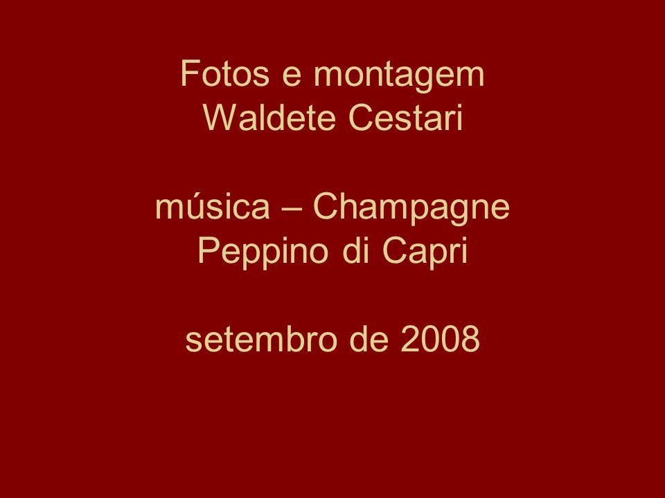 Fotos e montagem Waldete Cestari música – Champagne Peppino di Capri setembro de 2008