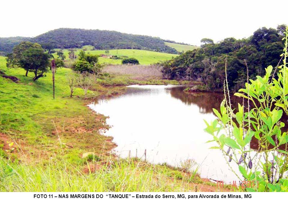 FOTO 11 – NAS MARGENS DO TANQUE – Estrada do Serro, MG, para Alvorada de Minas, MG