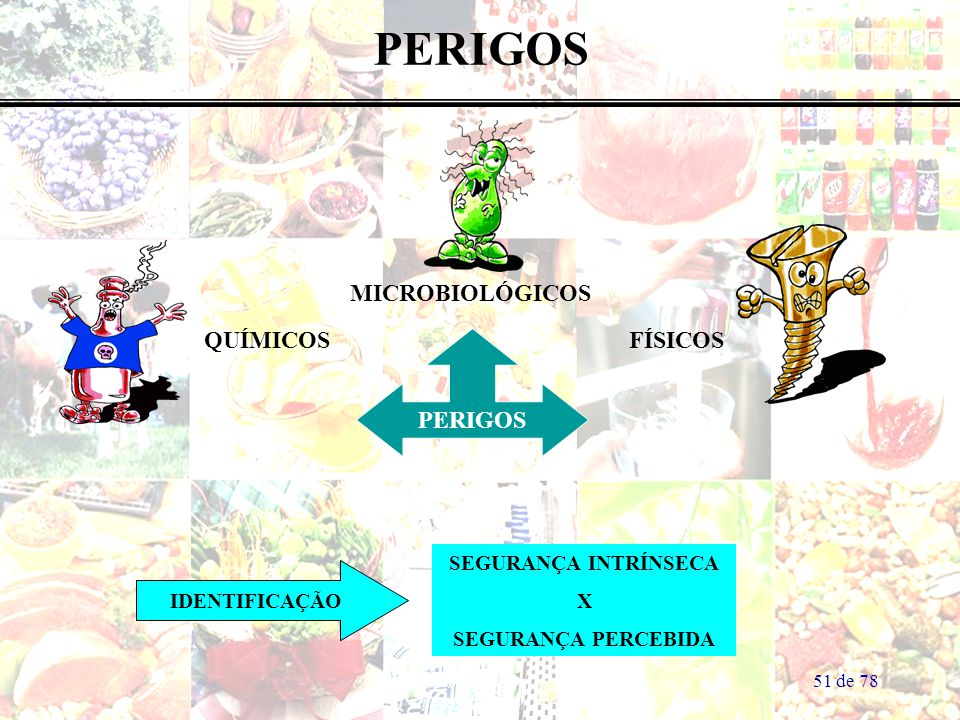 PERIGOS MICROBIOLÓGICOS QUÍMICOS FÍSICOS PERIGOS SEGURANÇA INTRÍNSECA
