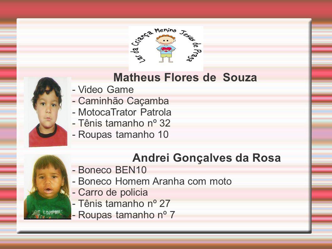 Matheus Flores de Souza