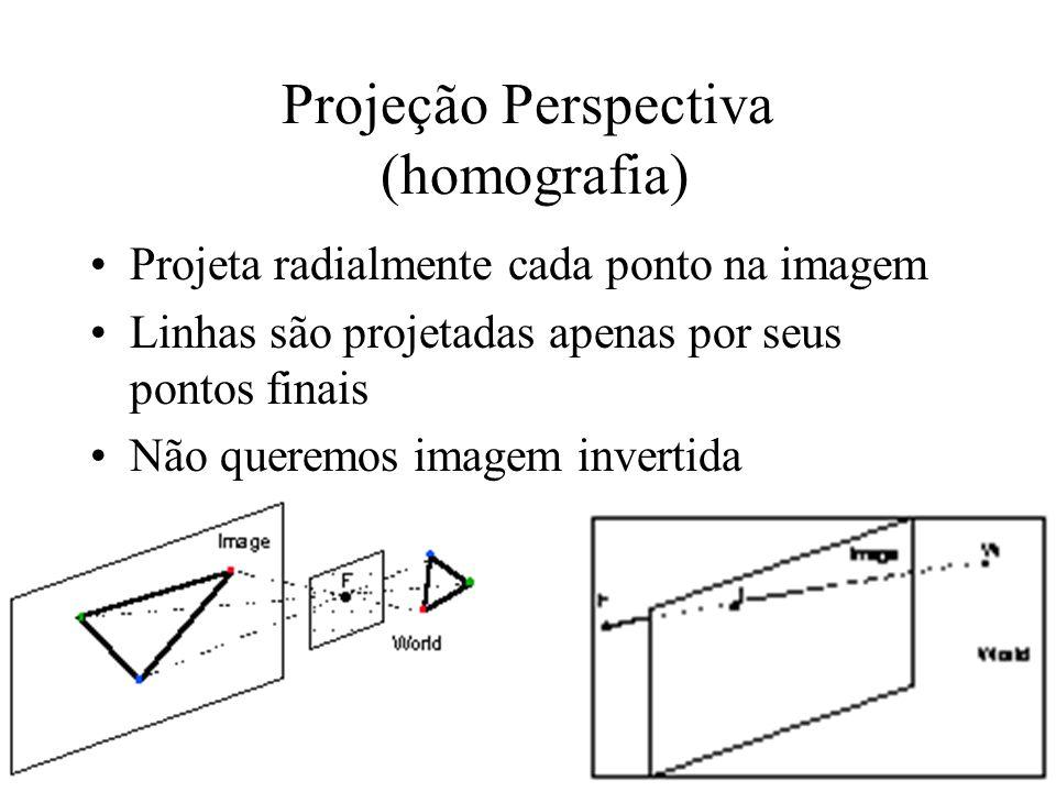 Projeção Perspectiva (homografia)