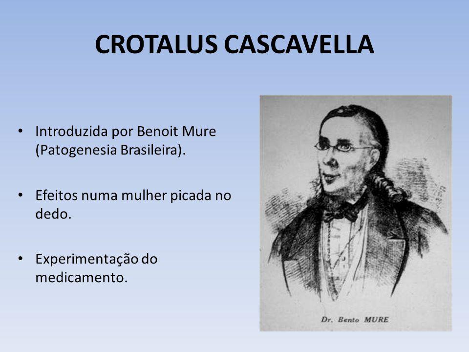 CROTALUS CASCAVELLA Introduzida por Benoit Mure (Patogenesia Brasileira). Efeitos numa mulher picada no dedo.
