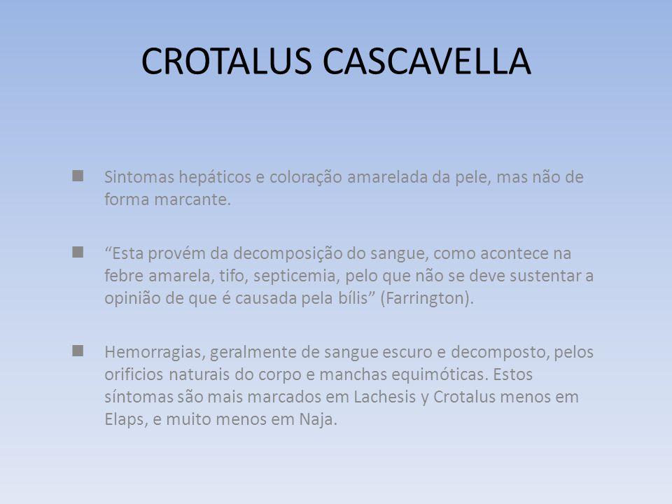 CROTALUS CASCAVELLA Sintomas hepáticos e coloração amarelada da pele, mas não de forma marcante.