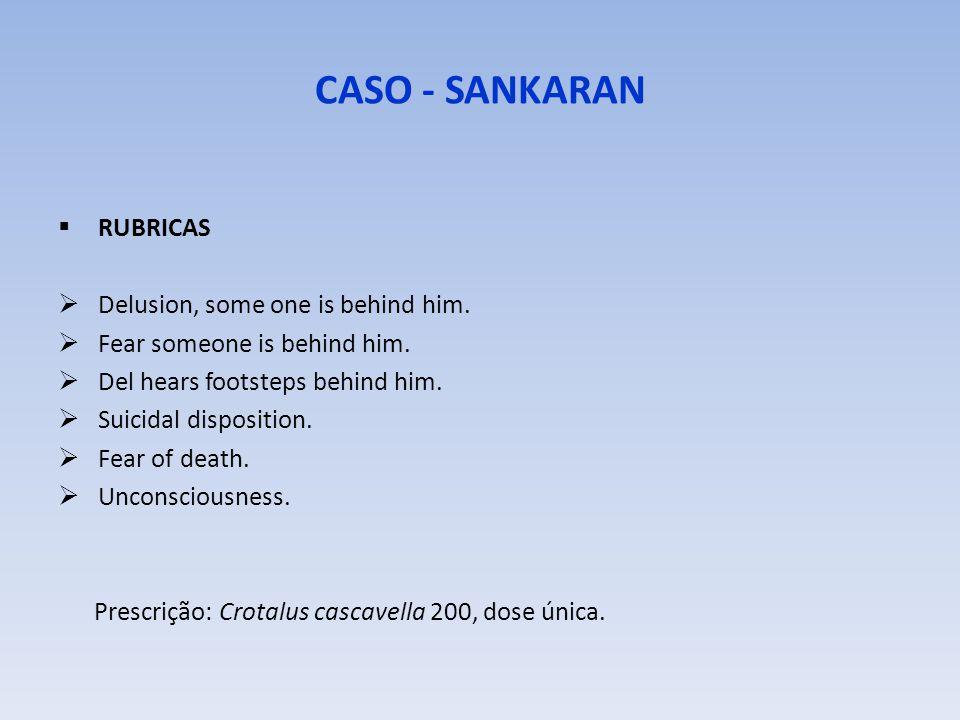 CASO - SANKARAN RUBRICAS Delusion, some one is behind him.