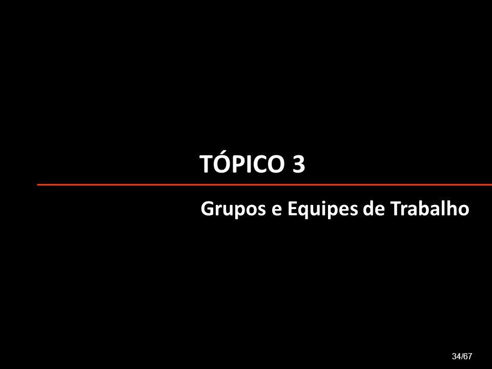 TÓPICO 3 Grupos e Equipes de Trabalho 34/67