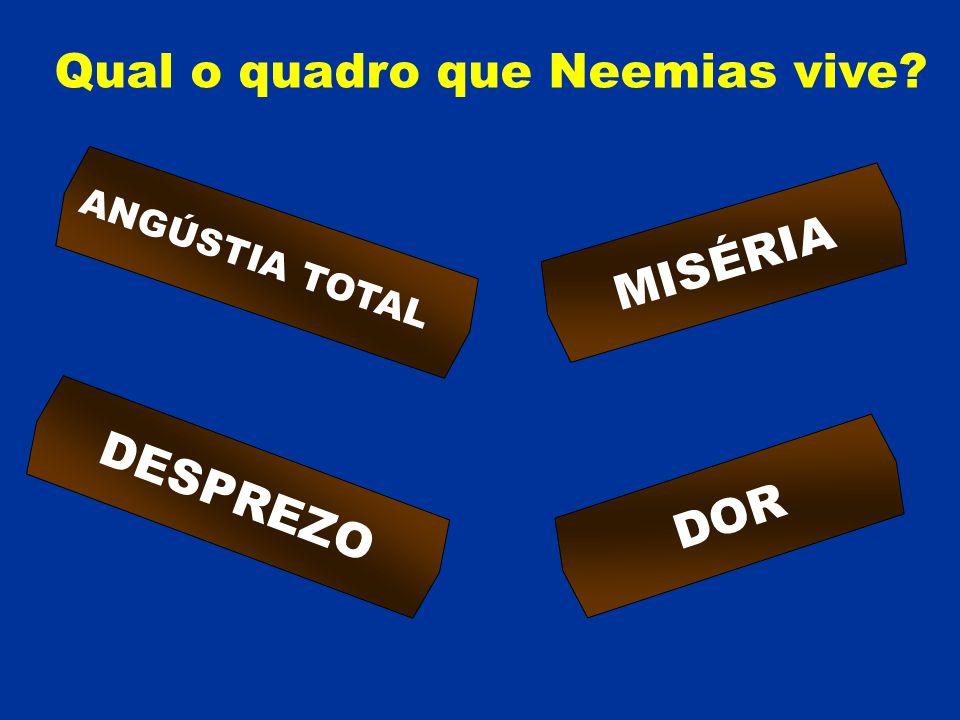 Qual o quadro que Neemias vive