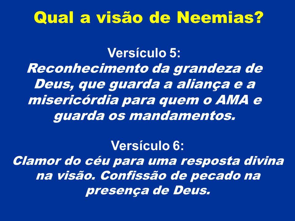 Qual a visão de Neemias Versículo 5:
