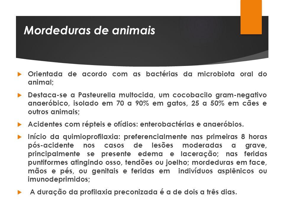 Mordeduras de animais Orientada de acordo com as bactérias da microbiota oral do animal;
