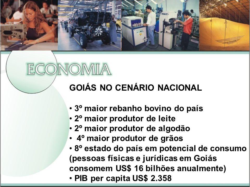 GOIÁS NO CENÁRIO NACIONAL