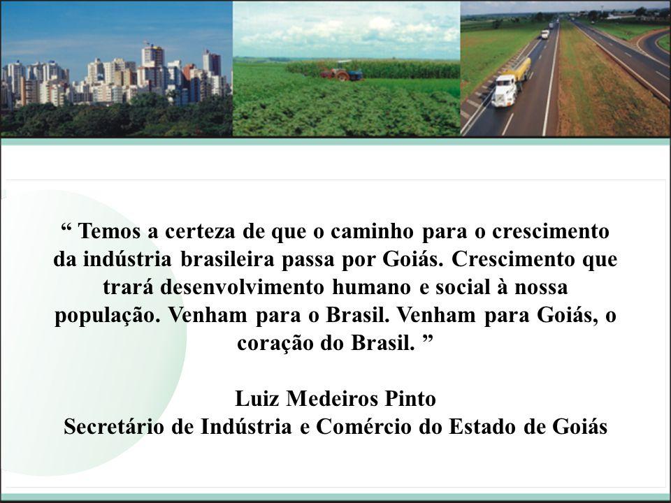 Secretário de Indústria e Comércio do Estado de Goiás