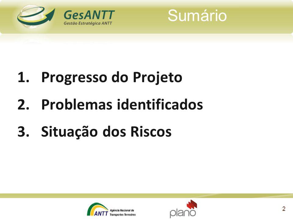 Sumário Progresso do Projeto Problemas identificados Situação dos Riscos