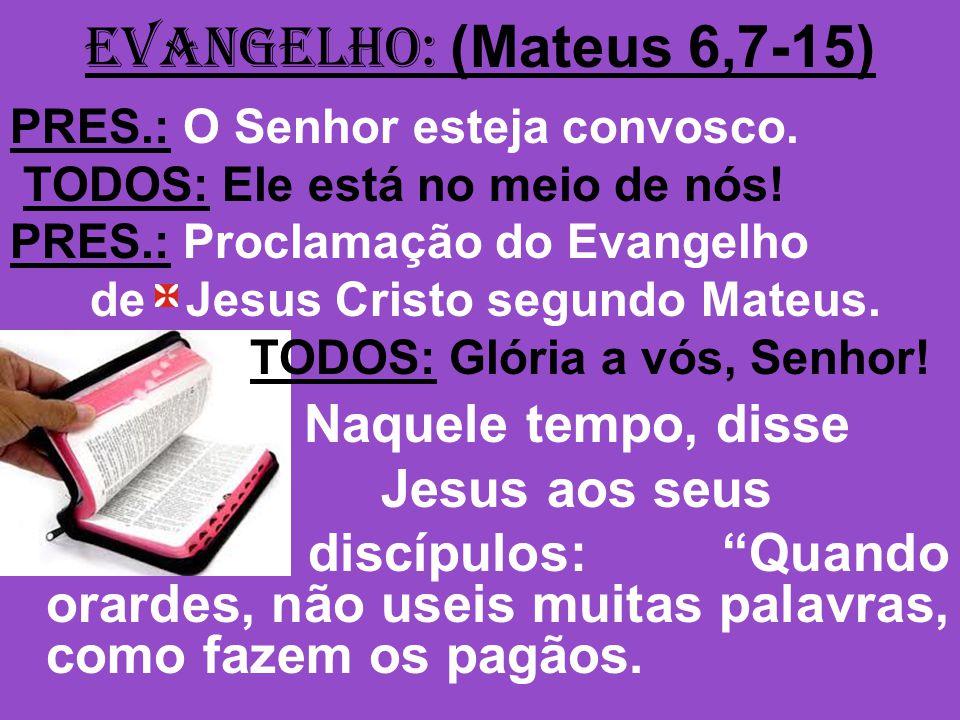EVANGELHO: (Mateus 6,7-15) Naquele tempo, disse Jesus aos seus