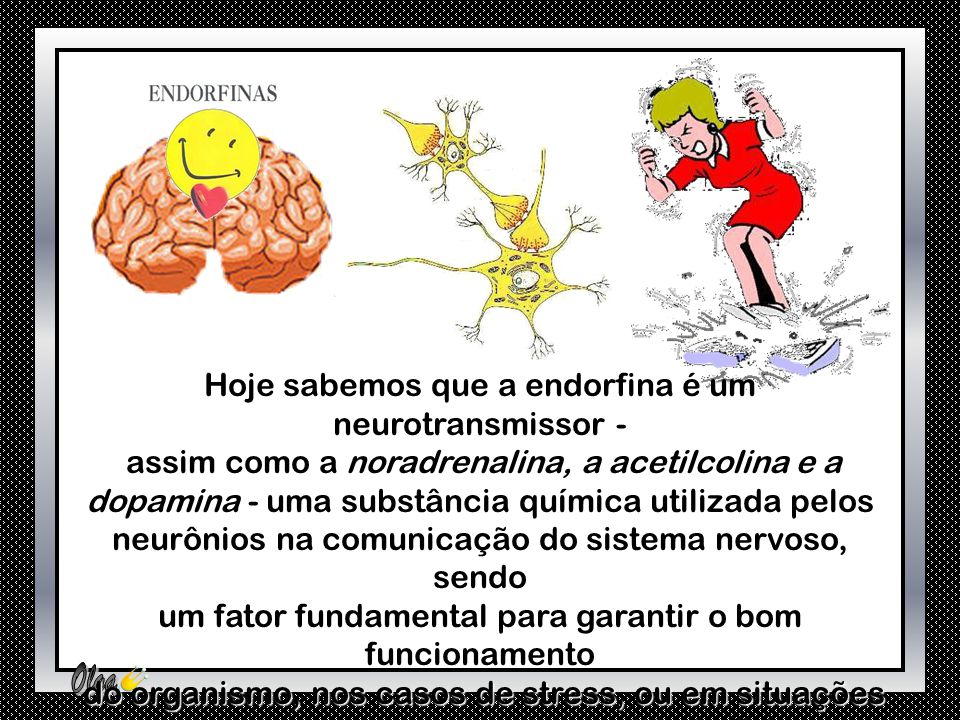Hoje sabemos que a endorfina é um neurotransmissor -