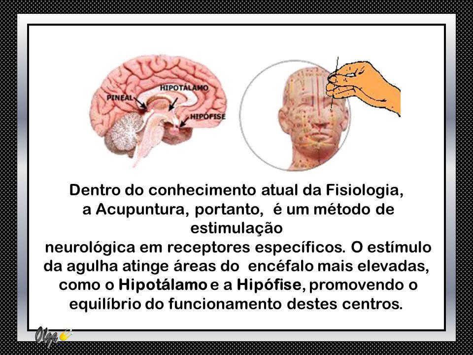 Dentro do conhecimento atual da Fisiologia,