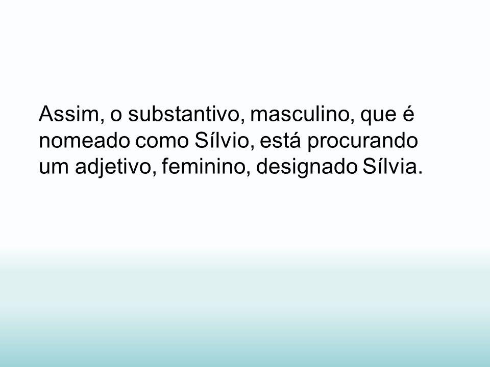 Assim, o substantivo, masculino, que é nomeado como Sílvio, está procurando um adjetivo, feminino, designado Sílvia.