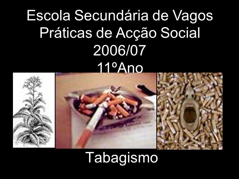 Escola Secundária de Vagos Práticas de Acção Social 2006/07 11ºAno