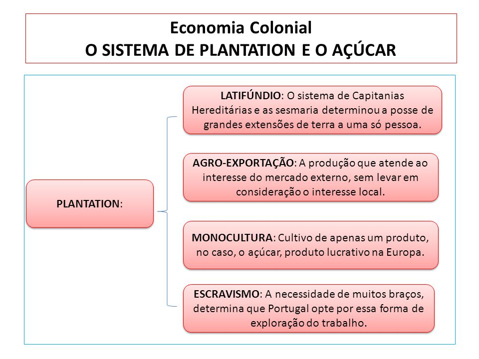 Economia Colonial O SISTEMA DE PLANTATION E O AÇÚCAR