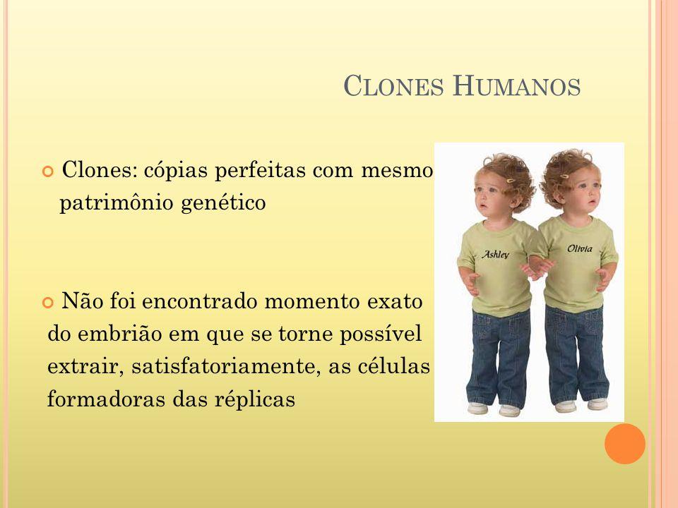 Clones Humanos Clones: cópias perfeitas com mesmo patrimônio genético