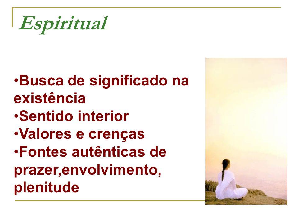 Espiritual Busca de significado na existência •Sentido interior