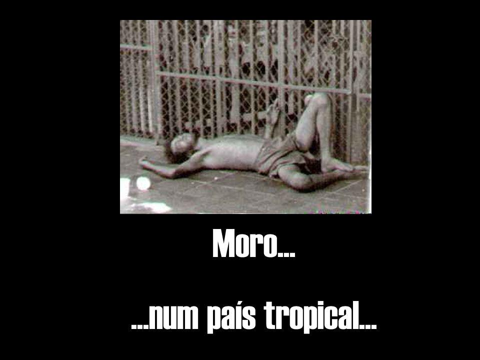 Moro... ...num país tropical...