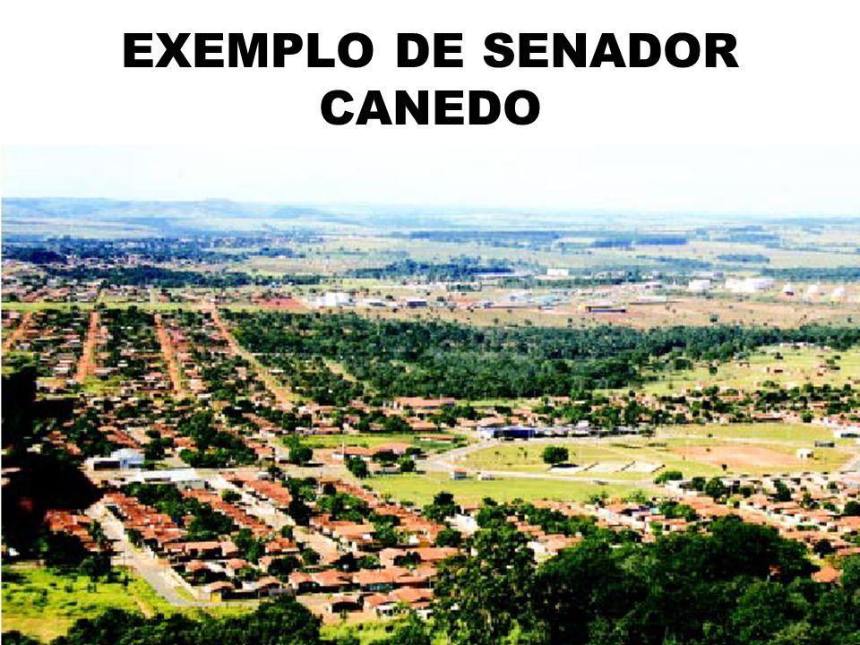 EXEMPLO DE SENADOR CANEDO