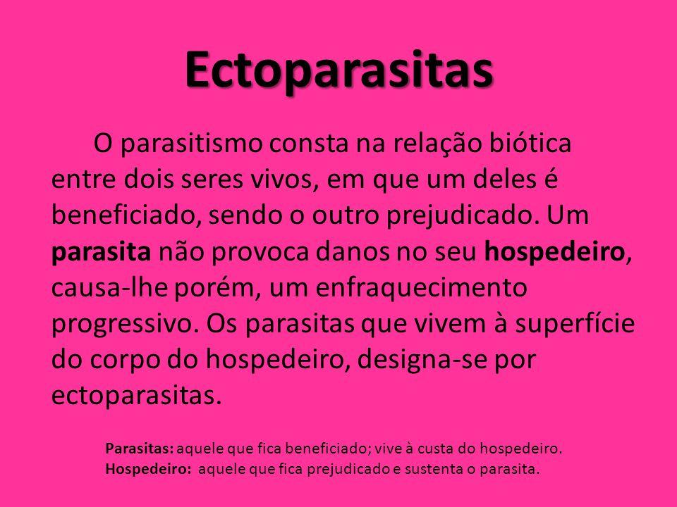 Ectoparasitas