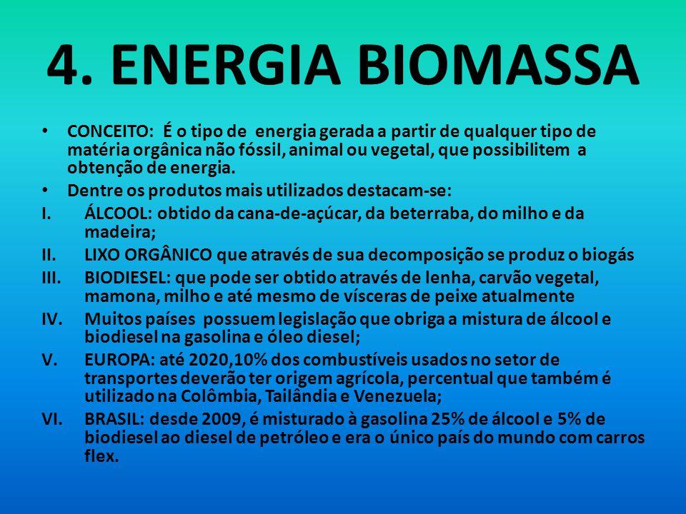 4. ENERGIA BIOMASSA