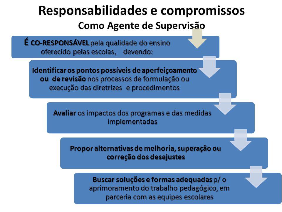 Responsabilidades e compromissos Como Agente de Supervisão