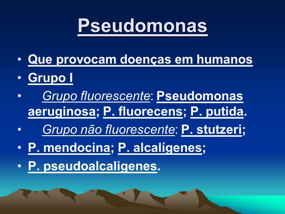Pseudomonas Que provocam doenças em humanos Grupo I