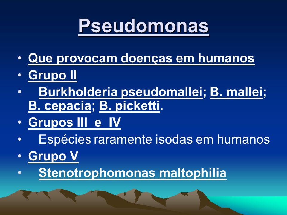 Pseudomonas Que provocam doenças em humanos Grupo II