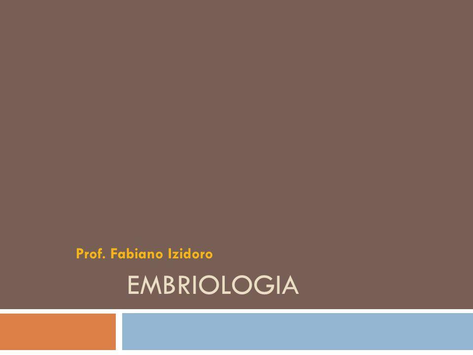 Prof. Fabiano Izidoro Embriologia