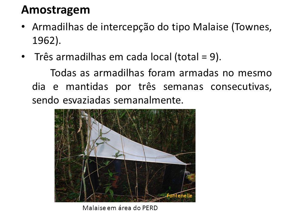 Amostragem Armadilhas de intercepção do tipo Malaise (Townes, 1962).
