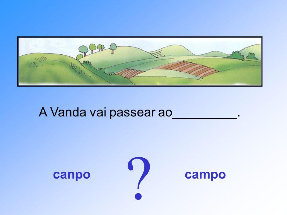 A Vanda vai passear ao_________.
