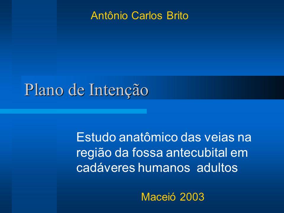 Antônio Carlos Brito Plano de Intenção. Estudo anatômico das veias na região da fossa antecubital em cadáveres humanos adultos.