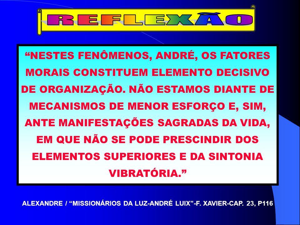 ALEXANDRE / MISSIONÁRIOS DA LUZ-ANDRÉ LUIX -F. XAVIER-CAP. 23, P116