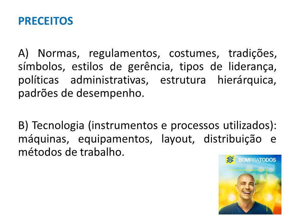 PRECEITOS A) Normas, regulamentos, costumes, tradições, símbolos, estilos de gerência, tipos de liderança, políticas administrativas, estrutura hierárquica, padrões de desempenho.