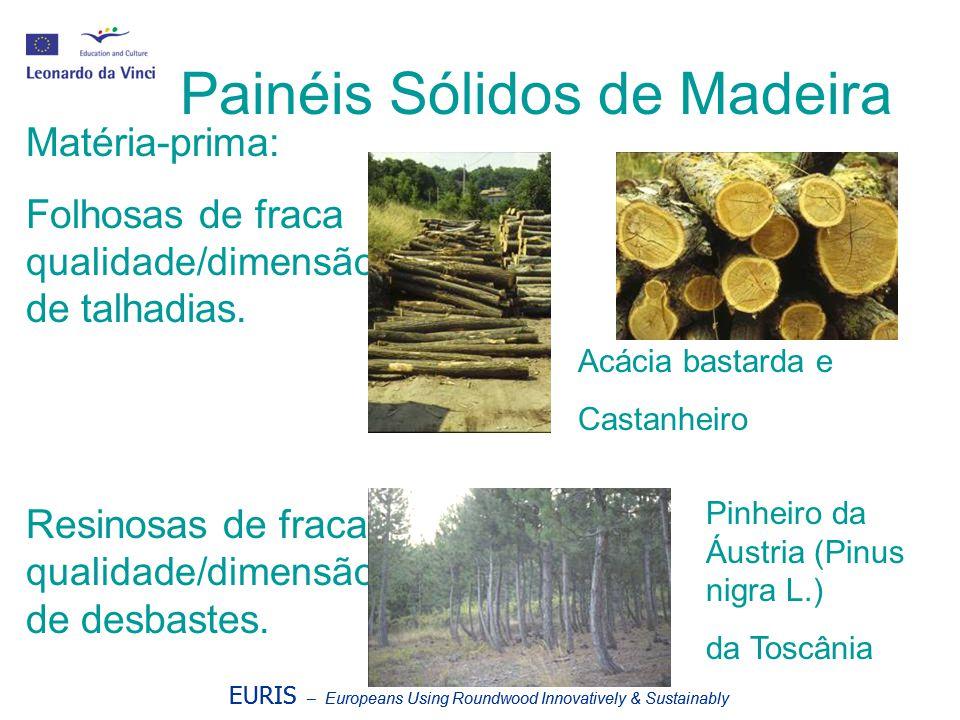 Painéis Sólidos de Madeira