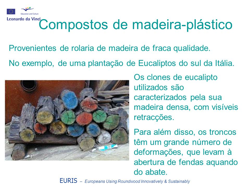 Compostos de madeira-plástico