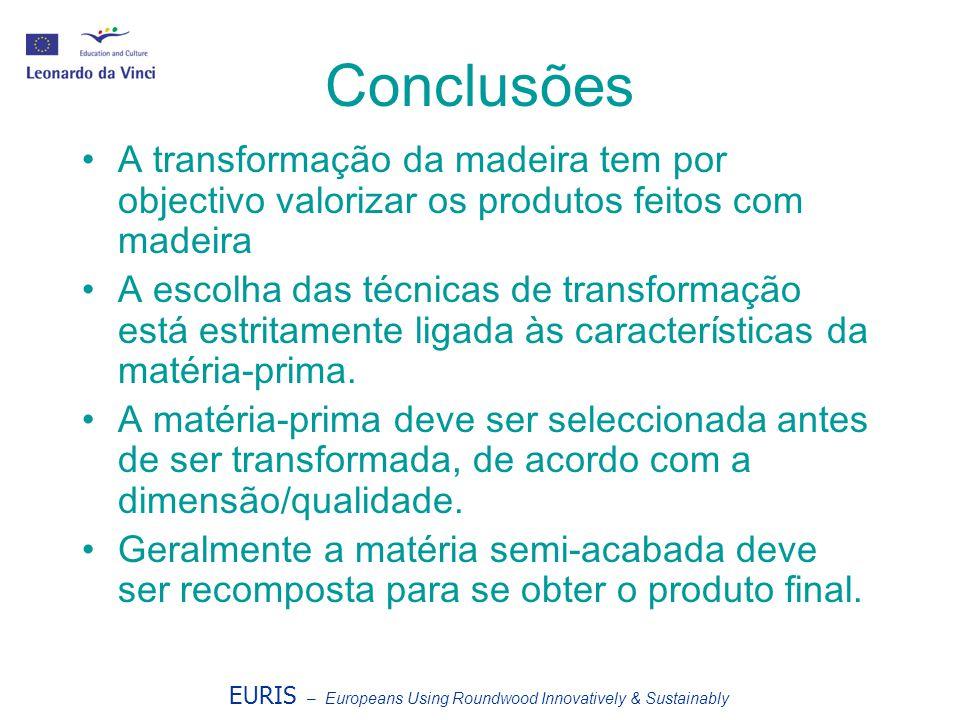 Conclusões A transformação da madeira tem por objectivo valorizar os produtos feitos com madeira.