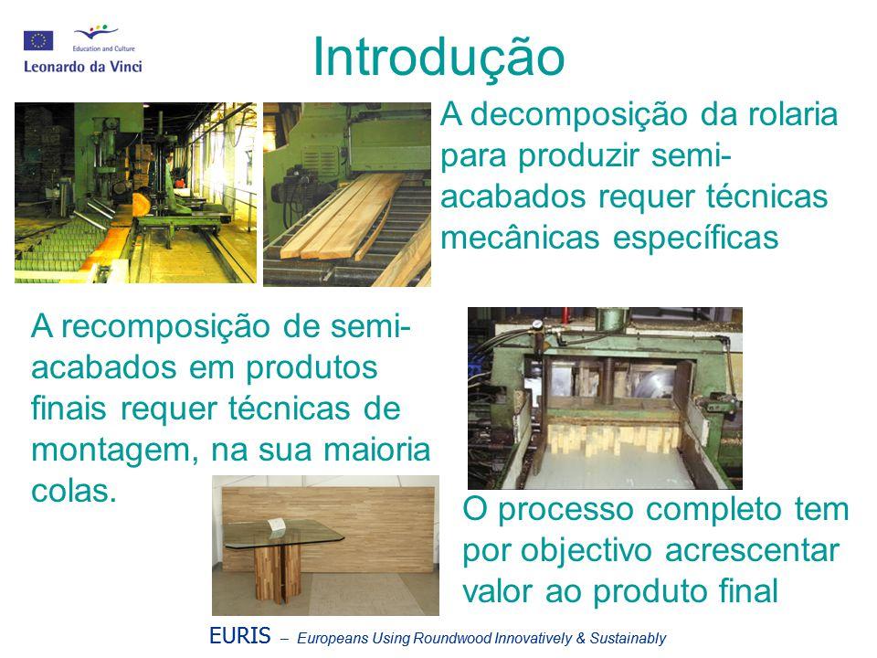 Introdução A decomposição da rolaria para produzir semi-acabados requer técnicas mecânicas específicas.