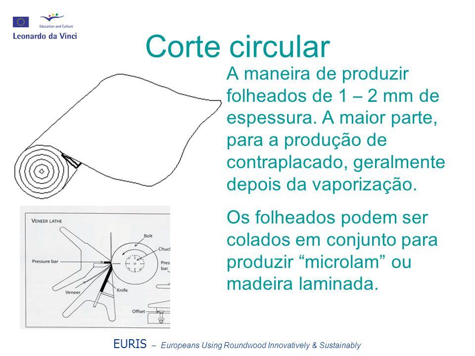 Corte circular