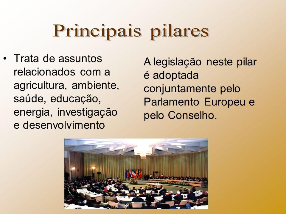 Principais pilares Trata de assuntos relacionados com a agricultura, ambiente, saúde, educação, energia, investigação e desenvolvimento.