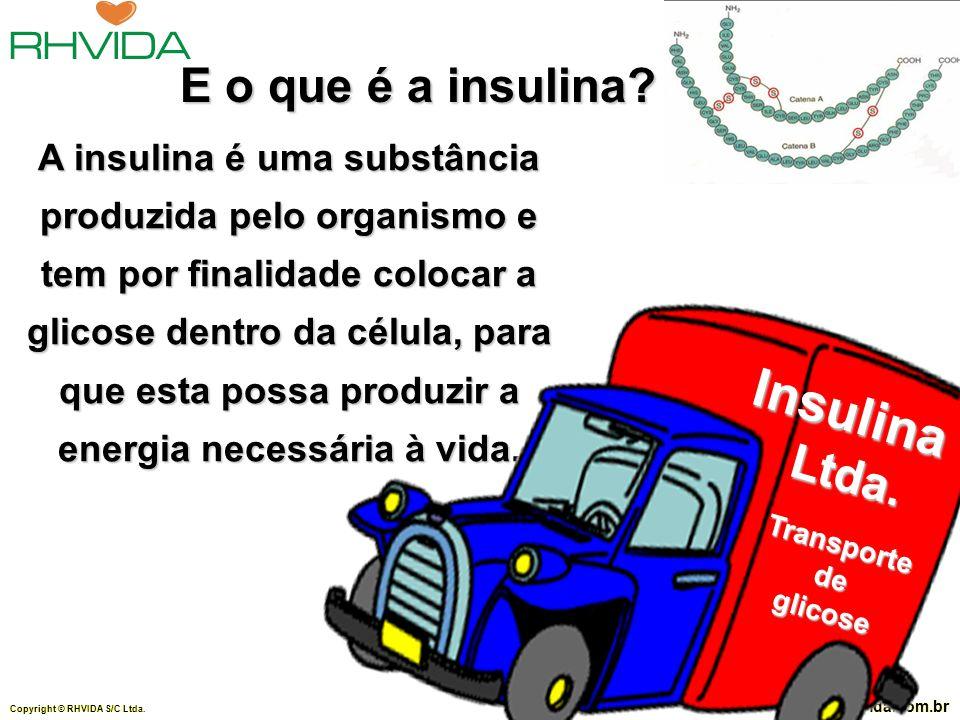 Insulina E o que é a insulina Ltda.