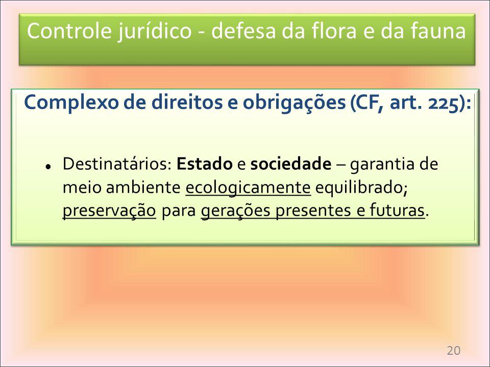 Complexo de direitos e obrigações (CF, art. 225):